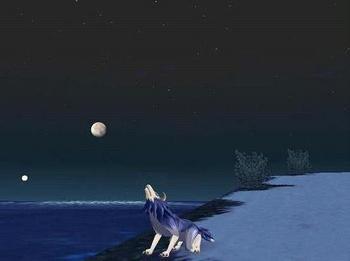 月と海とライガー.jpg